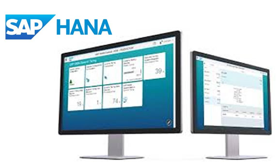 SAP Hana - Business One